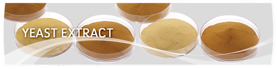 Yeast-Extracts-Banner.png